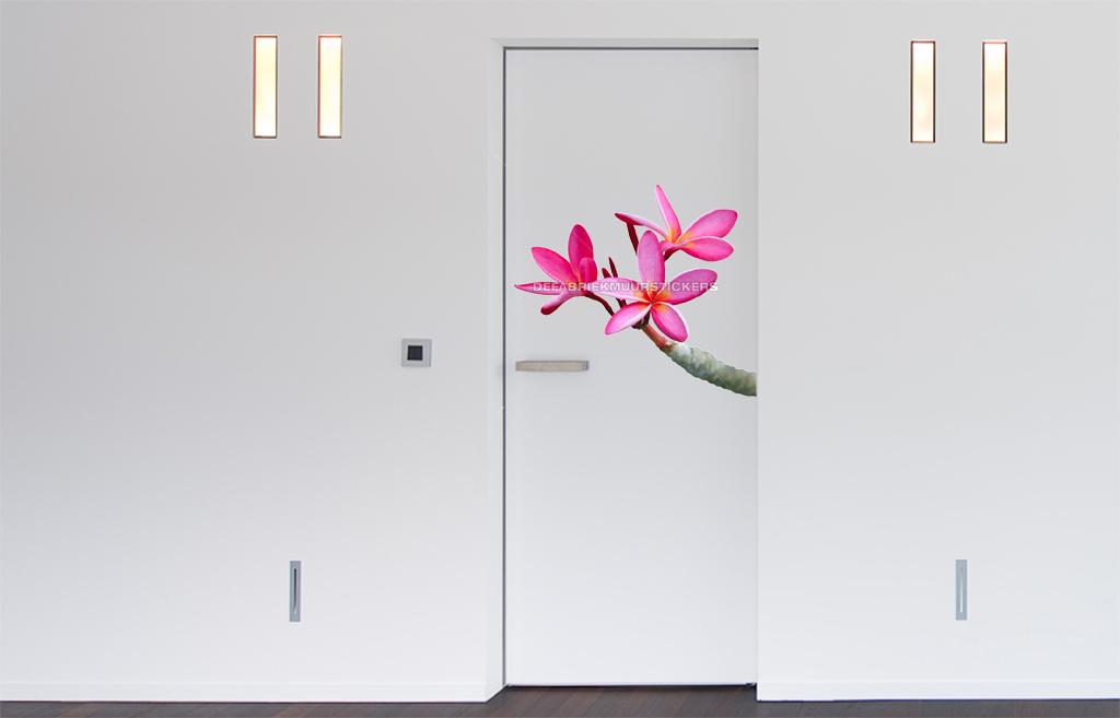 Stoel Slaapkamer Ikea : roze slaapkamer stoel : hou van roze, maar ...